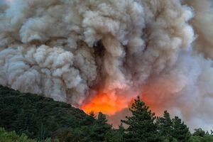 عکس/ کالیفرنیا در آتش سوخت