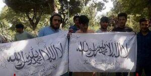 جزئیات جدید از تجمع اتباع افغانی با پرچم طالبان
