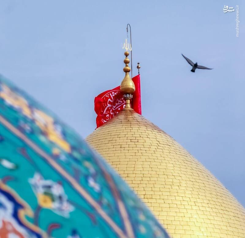 2874776 - عکس/ حالوهوای کربلا در آستانه عید غدیر