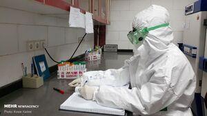 تشریح وضعیت تست های کرونا/ کارکرد تست PCR