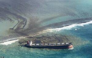 عکس/ فاجعه زیست محیطی در جزیره موریس