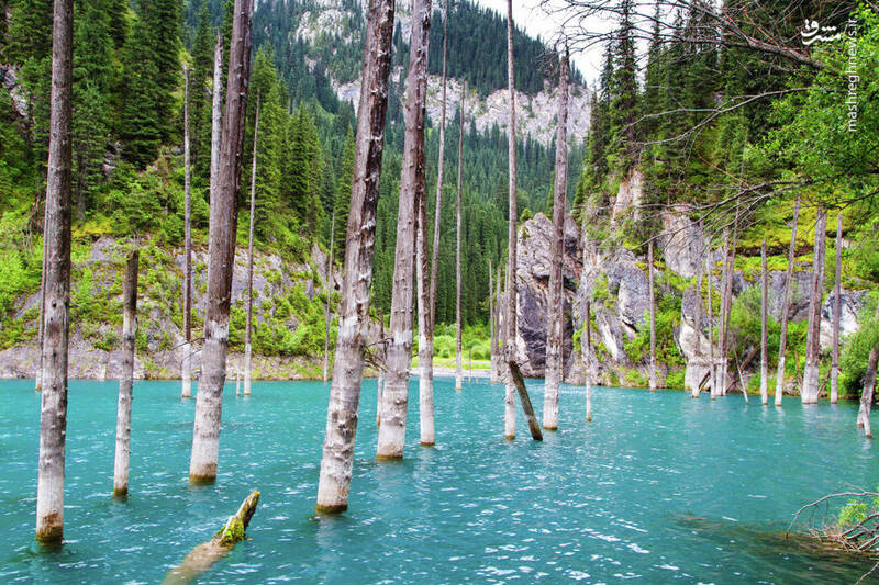 دریاچه کایندی در قزاقستان