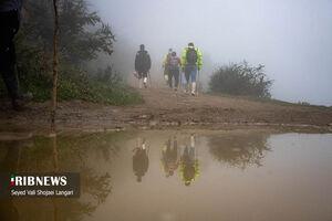 عکس/ جستجو پیرمرد مفقود شده در فیلبند