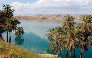 عکس/ چشم اندازی زیبا از طبیعت بکر دزفول