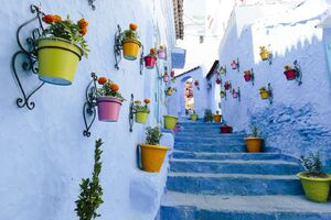 عکس/ شهر آبی مراکش