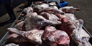 کشف 2 تن گوشت فاسد در پایتخت