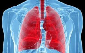 راز و رمزهای داشتن ریههای سالم