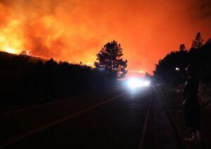 آتش سوزی شبانه در جنگلهای کالیفرنیا
