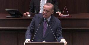 کنایه اردوغان به ماکرون؛ به دنبال عکس یادگاری در لبنان نیستیم