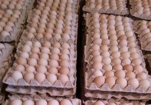 توضیح جهانگیری درباره ساماندهی به بازار تخممرغ