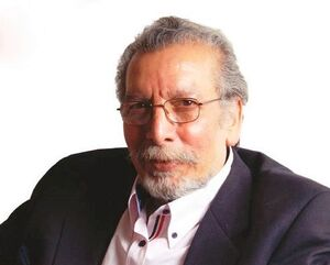 «بهمن مفید» درگذشت