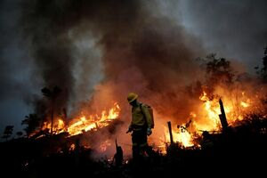 گسترش آتش سوزی در جنگلهای آمازون