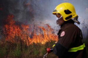 عکس/ گسترش آتش سوزی در جنگلهای آمازون