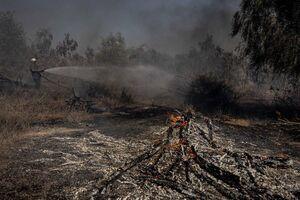 عکس/ بلای بالنهای آتشزا بر سر صهیونیستها
