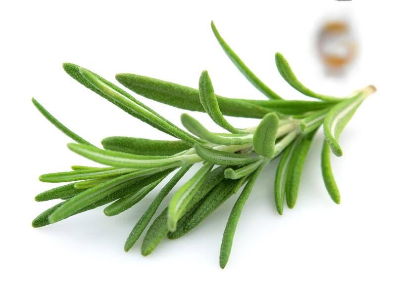 اگر سیر نمیخورید بجای آن این سبزی را میل کنید
