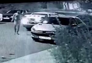فیلم/ سرقت ۲۰ ثانیهای باتری ۲۰۶ در تهران!