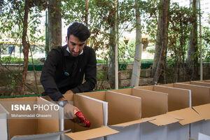 عکس/ آماده سازی بستههای سبدکلا برای مناطق محروم