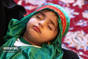 عکس/ همایش شیرخوارگان حسینی در شیراز