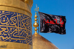حال و هوای عزاداران حسینی در کربلا