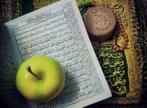 ماجرای پرطرفدار شدن نوحه «بوی سیب» در کودکی فرزند مداح معروف