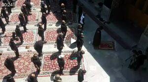فیلم/ نماز ظهر تاسوعا در حرم حضرت معصومه (س)