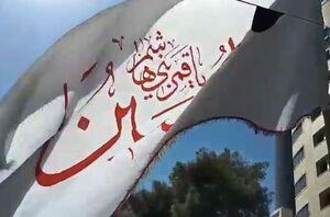 یک دهه دلدادگی به ارباب در مشهدالرضا +عکس و فیلم