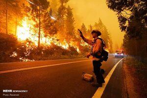 عکس/ شدت گرفتن آتش سوزی جنگلهای کالیفرنیا