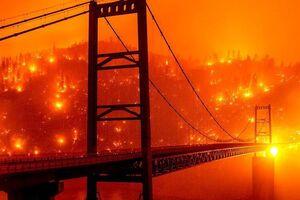 تصاویری از جهنم کالیفرنیا