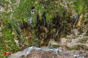 عکس/ آبشاری زیبا در دل طبیعت سوادکوه