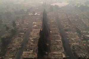 تصاویری از جهنم سوخته کالیفرنیا