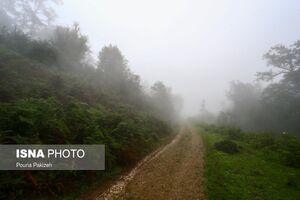 تصاویر دیدنی از روستایی ییلاقی درغرب گیلان