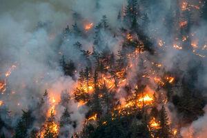 فیلم/ دود آتش آمریکا در چشم اروپا