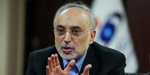صالحی: ایران برای ادامه همکاری با جامعه بینالمللی آماده است