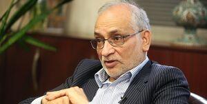 مرعشی: کارگزاران از  لاریجانی حمایت نمیکند/ دولت آینده باید یک دولت تکنوکرات باشد