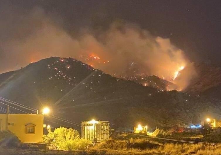 فیلم/ آتشسوزی به جنگلهای عربستان رسید