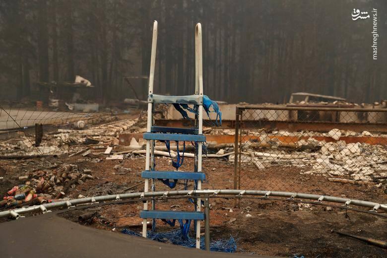 2920415 - عکس/ نابودی بیسابقه جنگلهای کالیفرنیا در حریق