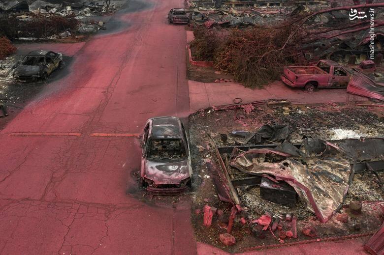 2920420 - عکس/ نابودی بیسابقه جنگلهای کالیفرنیا در حریق