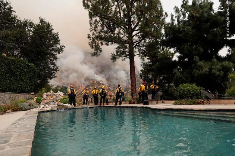 2920422 - عکس/ نابودی بیسابقه جنگلهای کالیفرنیا در حریق