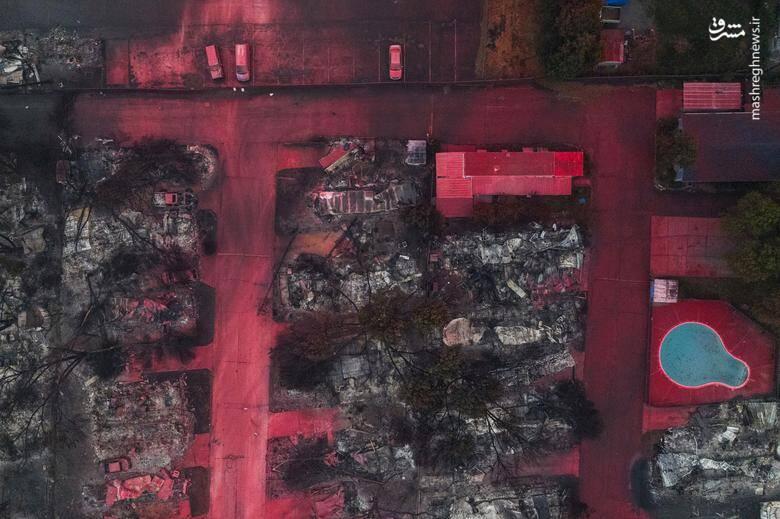 2920423 - عکس/ نابودی بیسابقه جنگلهای کالیفرنیا در حریق