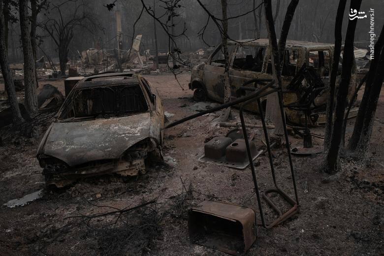 2920431 - عکس/ نابودی بیسابقه جنگلهای کالیفرنیا در حریق