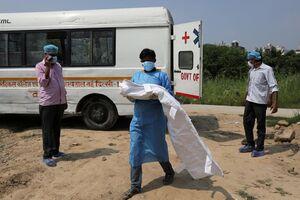 نوزاد 3 ماهه قربانی ویروس کرونا؛ گورستان شهر دهلی هند