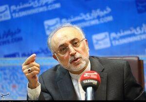 صالحی:آژانس اعلام کرده، درخواست دیگری برای بازرسی ندارد