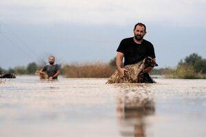 عکس/ سیلاب مرگبار در یکی از جزایر یونان