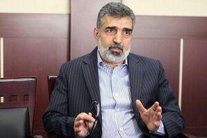 کمالوندی: ایران امکان طراحی راکتور را دارد