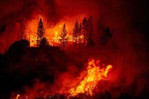 آتشسوزی آمریکا - نمایه