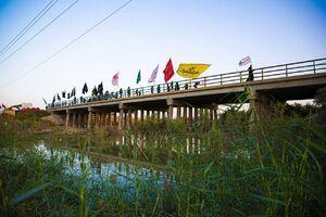 عکس/ پیاده روی مردم عراق به سمت کربلا