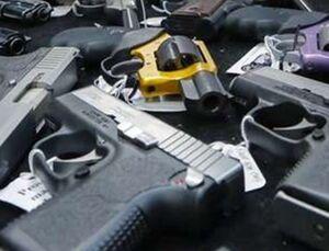 ۴۰ قبضه سلاح آمریکایی در سرپلذهاب کشف شد