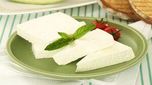 خواص و مضرات پنیر که بهتر است بدانید