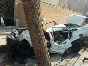 عکس/شکل عجیب پراید بعد از تصادف با یک درخت