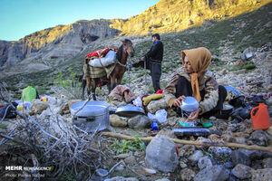 عکس/ سختیها و زیباییهای کوچ عشایر